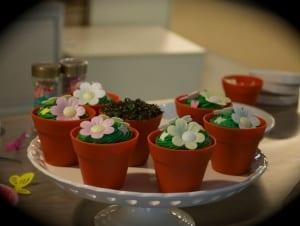 Pot plant cupcakes
