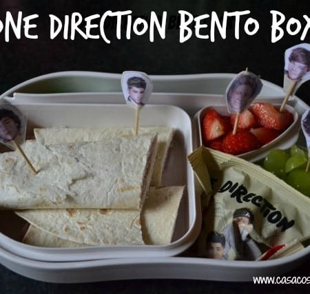 One Direction packed lunch bento box