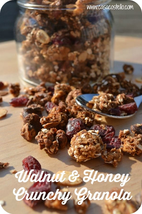 Walnut Honey Cranberries Crunchy Granola