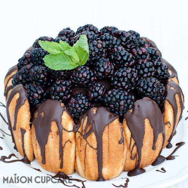 Chocolate Blackberry Charlotte Cake
